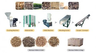 Want A Thriving Business? Focus On Small Pellet Mills!